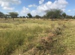 kilifi-land-for-sale2