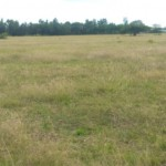 Land for Sale in Kabarak