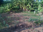magarini-land-for-sale2