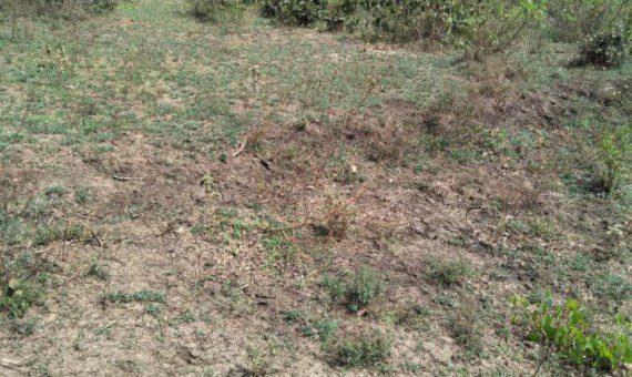 Mavueni Land for Sale