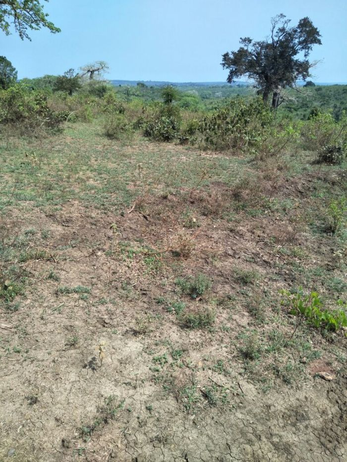 Mavueni Land for Sale