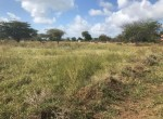 plots-for-sale-in-kilifi