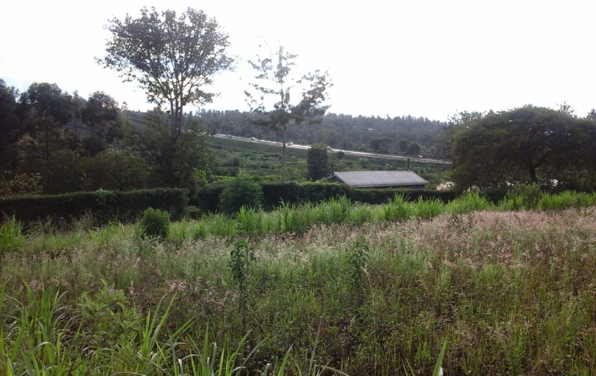 Thika Land for Sale