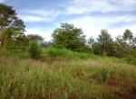 plot-for-sale-thika
