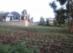 thika-land-for-sale