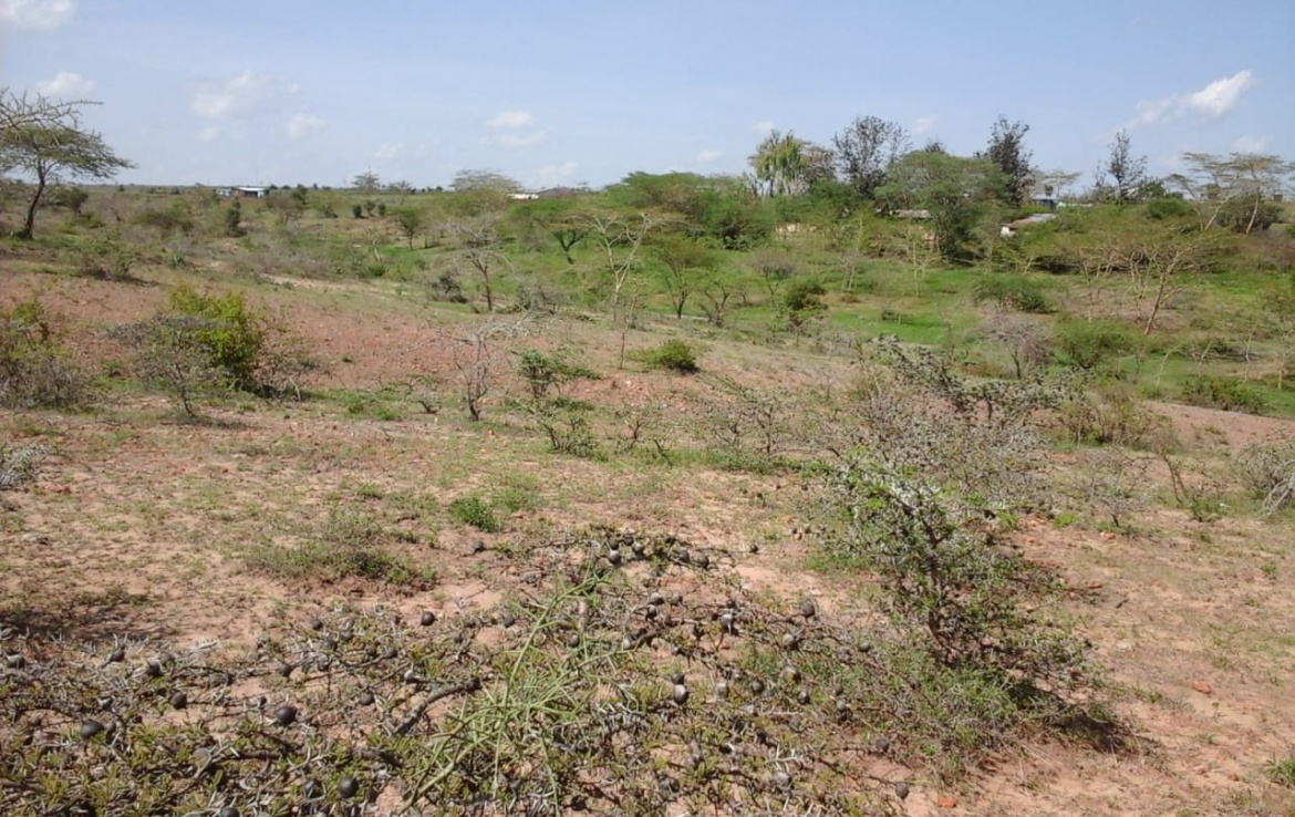 Konza land for sale